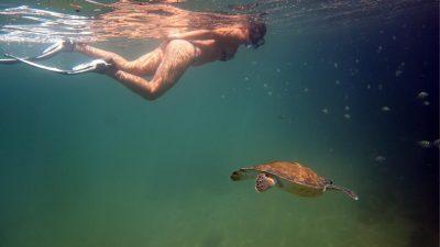 pousada-nautilus-ilha-grande-mergulho 26